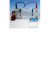 Horizontal Mini-Gel Systems